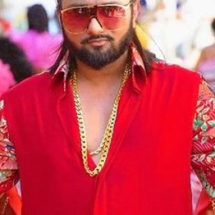 Yo Yo Honey Singh Biography
